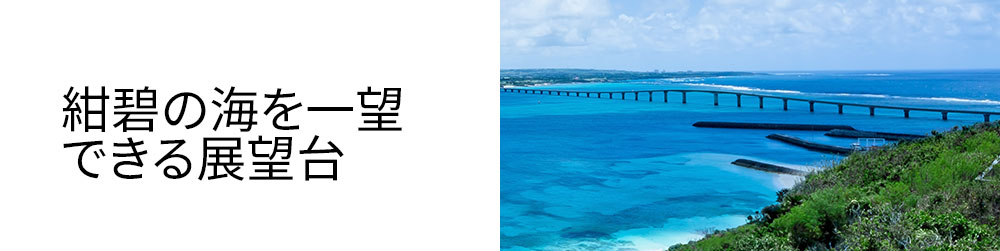 isigaki-top-10-3