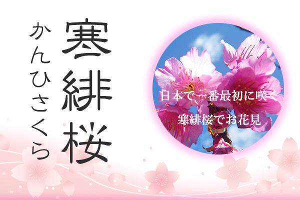 石垣島スライド4