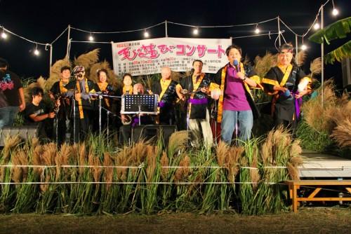 毛遊びコンサート