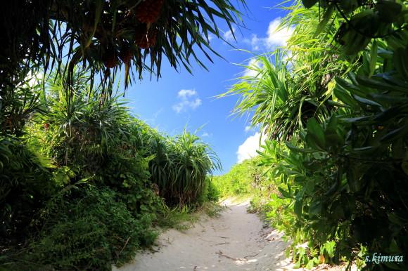 砂山ビーチ坂1
