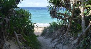 トケイ浜への道
