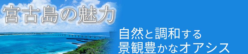 miyako-miryoku5
